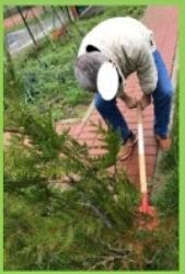 Le jardinage n'a pas d' handicap